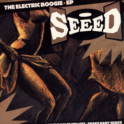 Seeed - The electric Boogie EP