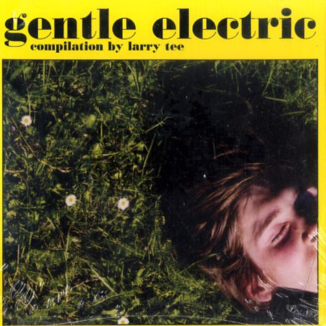 Larry Tee compiles - Gentle electric