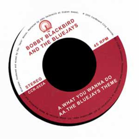 Bobby Blackbird And The Bluejays - What you wanna do
