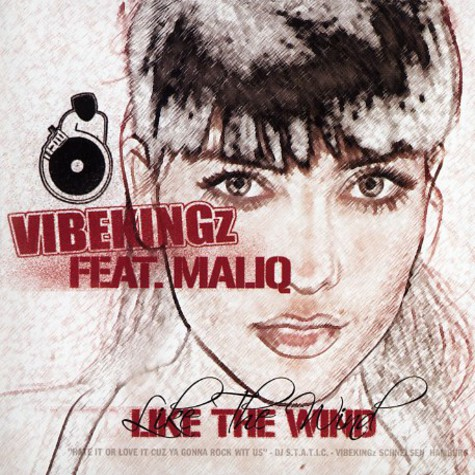 Vibekingz - She's like the wind feat. Maliq