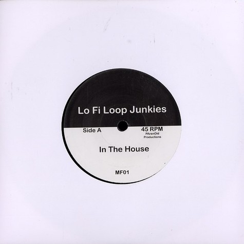 Lo Fi Loop Junkies - In the house