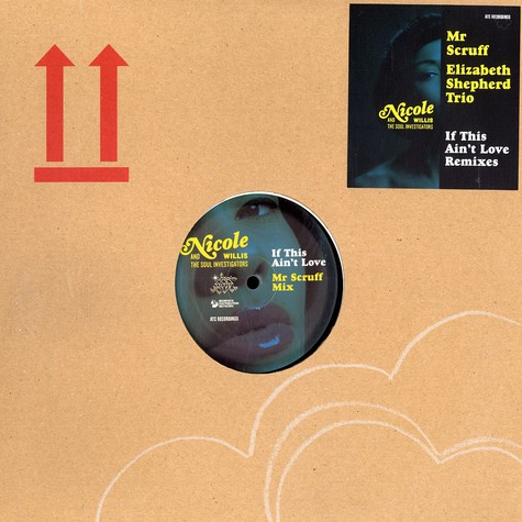 Nicole Willis And The Soul investigators - If this ain't love remixes