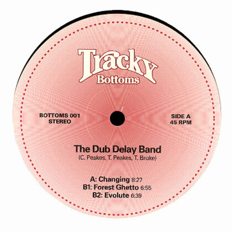 Dub Delay Band, The - Changing EP