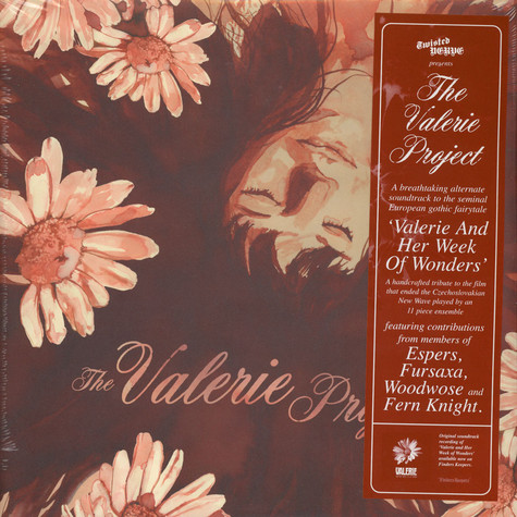Valerie Project, The - The Valerie Project