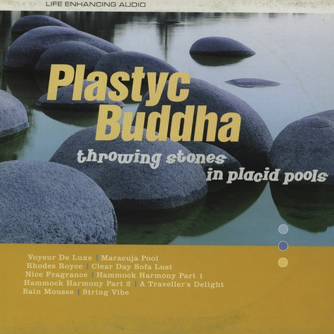 Plastyc Buddha - Throwing stones in placid pools