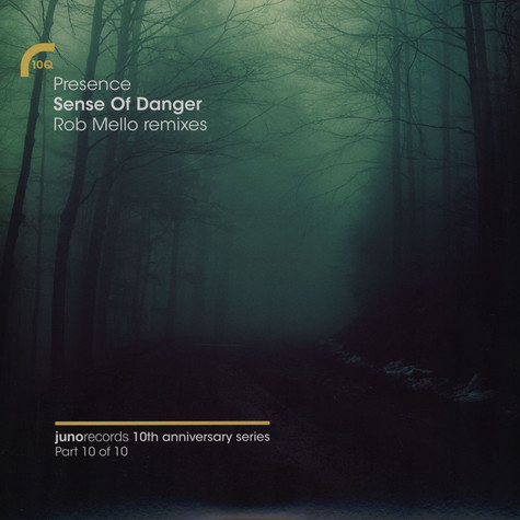 Presence (Shara Nelson & Charles Webster) - Sense Of Danger Rob Mello Remixes