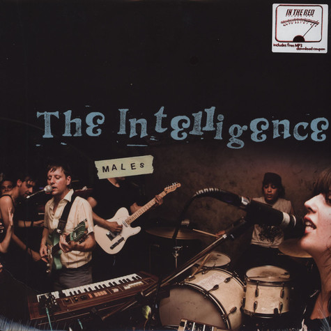 Intelligence, The - Males
