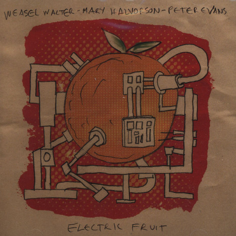 Weasel Water - Mary Halvorson - Peter Evans - Electric Fruit