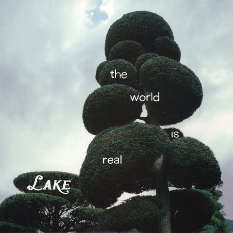 Lake - World Is Real