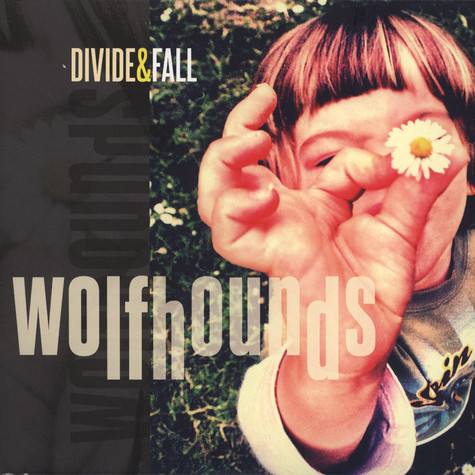 Wolfhounds, The - Divide & Fall