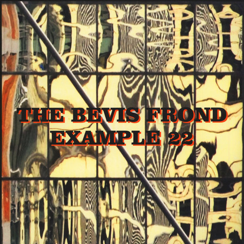 Bevis Frond, The - Example 22