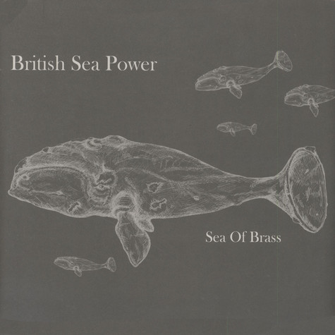 British Sea Power - Sea Of Brass