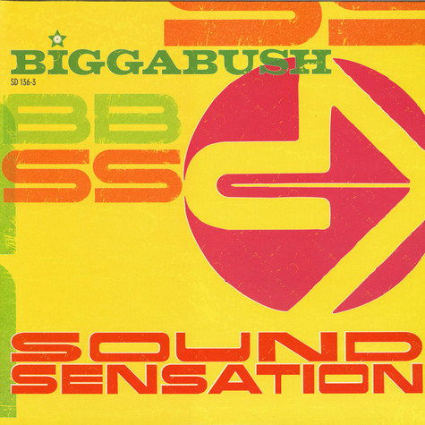V.A. - Bigga Bush - Sound Sensation
