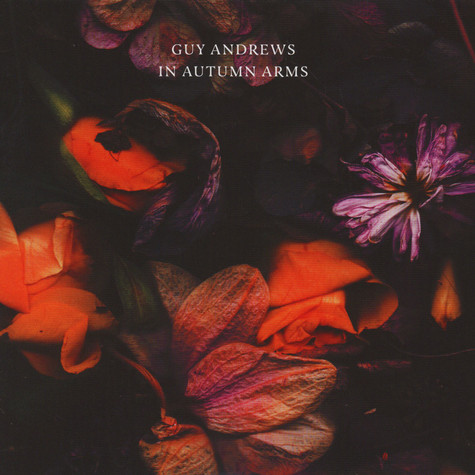 Guy Andrews - In Autumn Arms