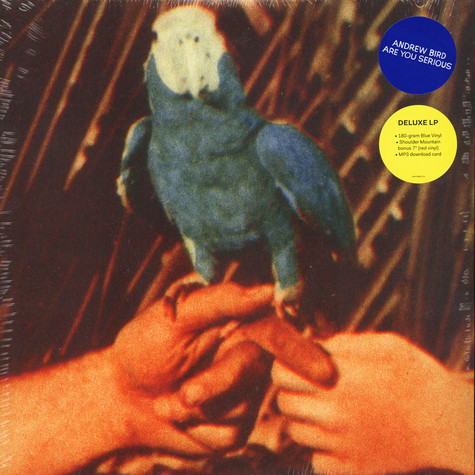 Andrew Bird - Are You Serious Deluxe Edition