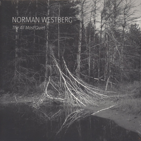 Norman Westberg of Swans - The All Most Quiet