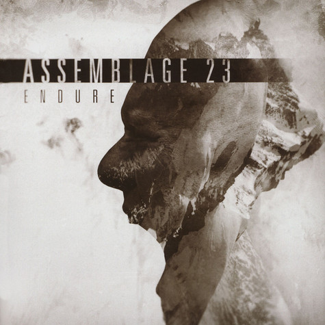 Assemblage 23 - Endure
