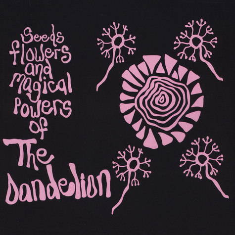 Dandelion - Seeds Flowers And Magical Powers Of The Dande