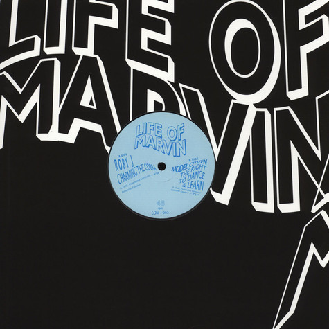Life Of Marvin - Volume 2