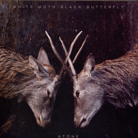 White Moth Black Butterfly - Atone