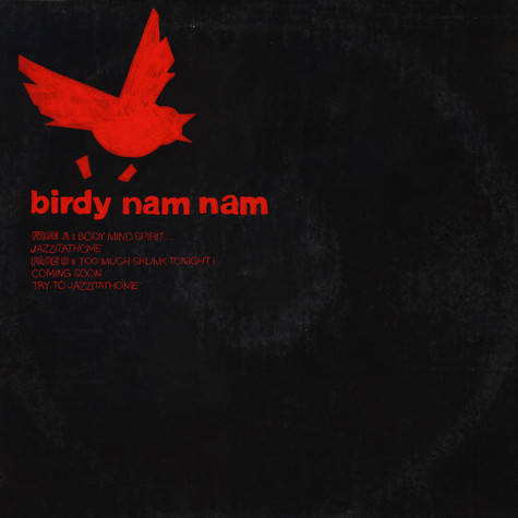 Birdy Nam Nam - Body, Mind, Spirit... EP