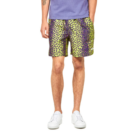 Stüssy - Leopard Water Short