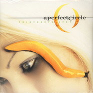 A Perfect Circle - Thirteenth step