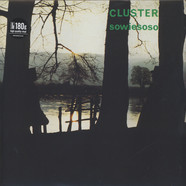 Cluster - Sowiesoso