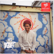 Toro Y Moi - What For? Black Vinyl Edition