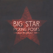 Big Star - Picking Posies