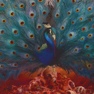Opeth - Sorceress Picture Vinyl Edition