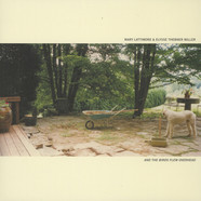 Mary Lattimore & Elysse Thebner Miller - And The Birds Flew Overhead
