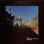 Cinematic Orchestra, The - Ma Fleur