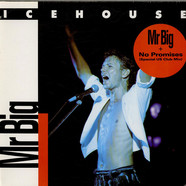 Icehouse - Mr Big