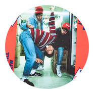 Beastie Boys - Photo Slipmat