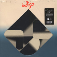Wild Nothing - Indigo Black Vinyl Edition