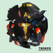 Troker - Imperfecto