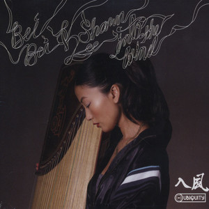 Bei Bei & Shawn Lee - Into The Wind