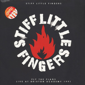 Stiff Little Fingers - Fly The Flags (Live At The Brixton Academy 1991)