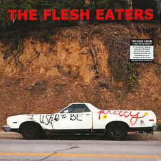 Flesh Eaters, The - I Used To Be Pretty